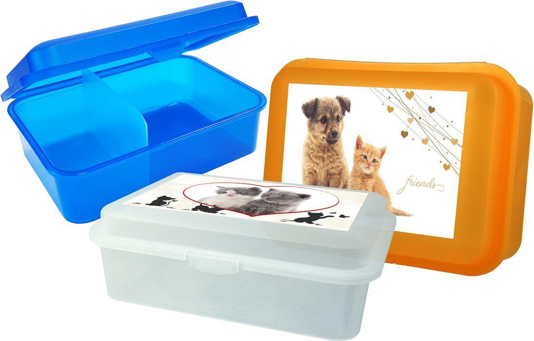 box  1,50l, svačina, dělený, MAZLÍČI-friends, 18x13x7cm, plast