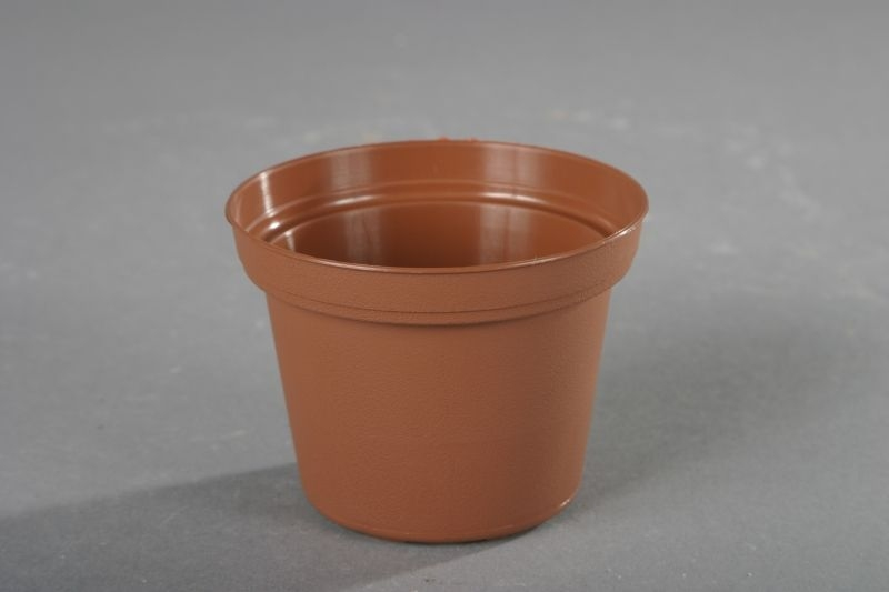 květ. d8cm CLASSIC TOD/leh (min.obj.10ks)