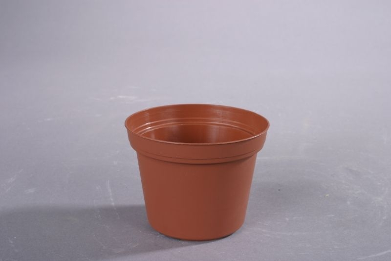 květ. d12cm PREMIUM VCG /leh (min.obj.10ks)