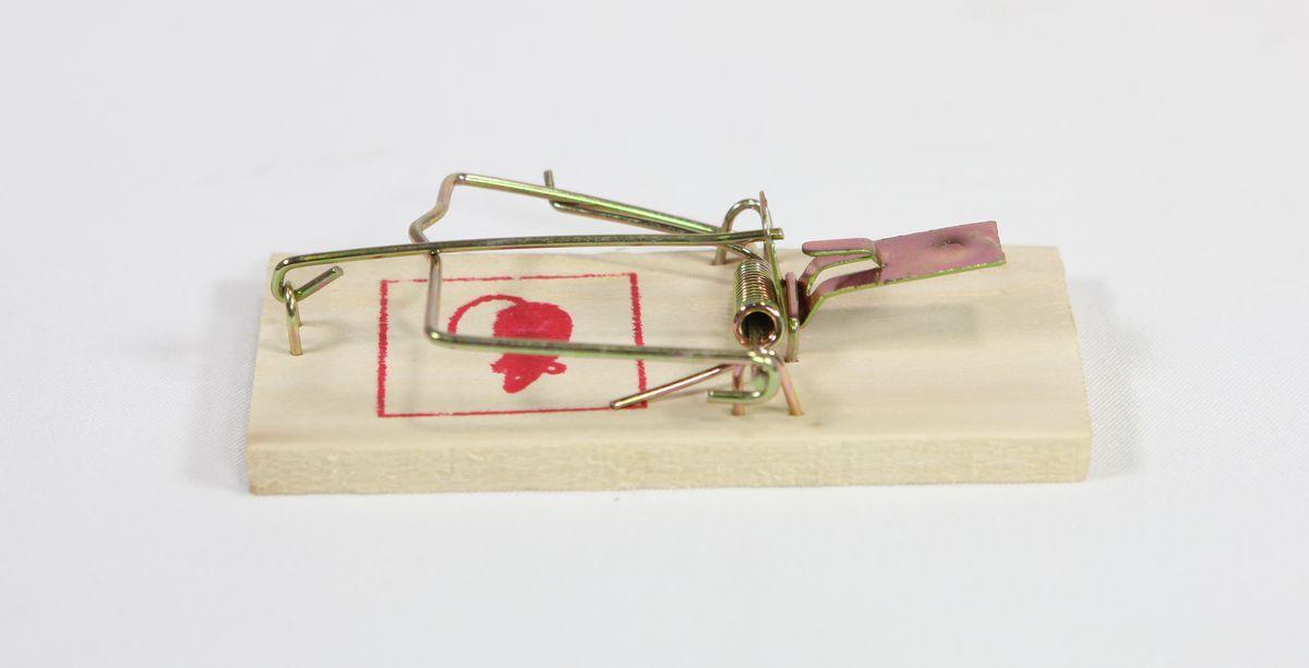 past na myši dřevo (1ks),                                  obrázek MYŠ
